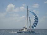 6. Catamaran b