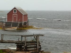 Fogo harbour