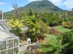 Nevis Botanical gardens 2