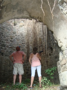 Nevis plantation ruins with roots